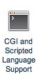 CGI & Scripted Language